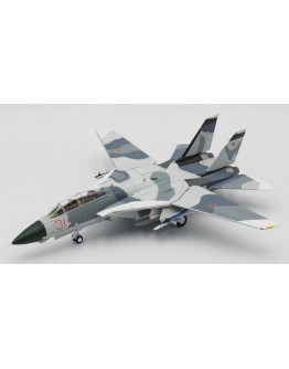 F14A Tomcat US Navy RED 31 TOMCATSKY - Clean Version