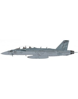 "E/A-18G Growler USAF, 168772, VAQ-131 ""Operation Inherent Resolve"""